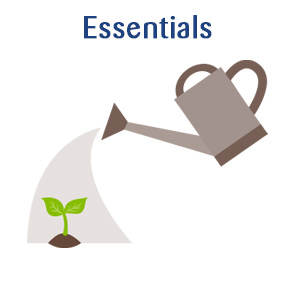Essentials Annual Long2 Consulting